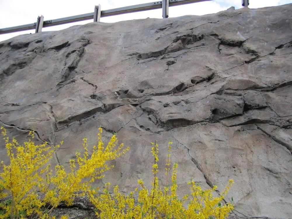 Lakeshore Bluff Repair